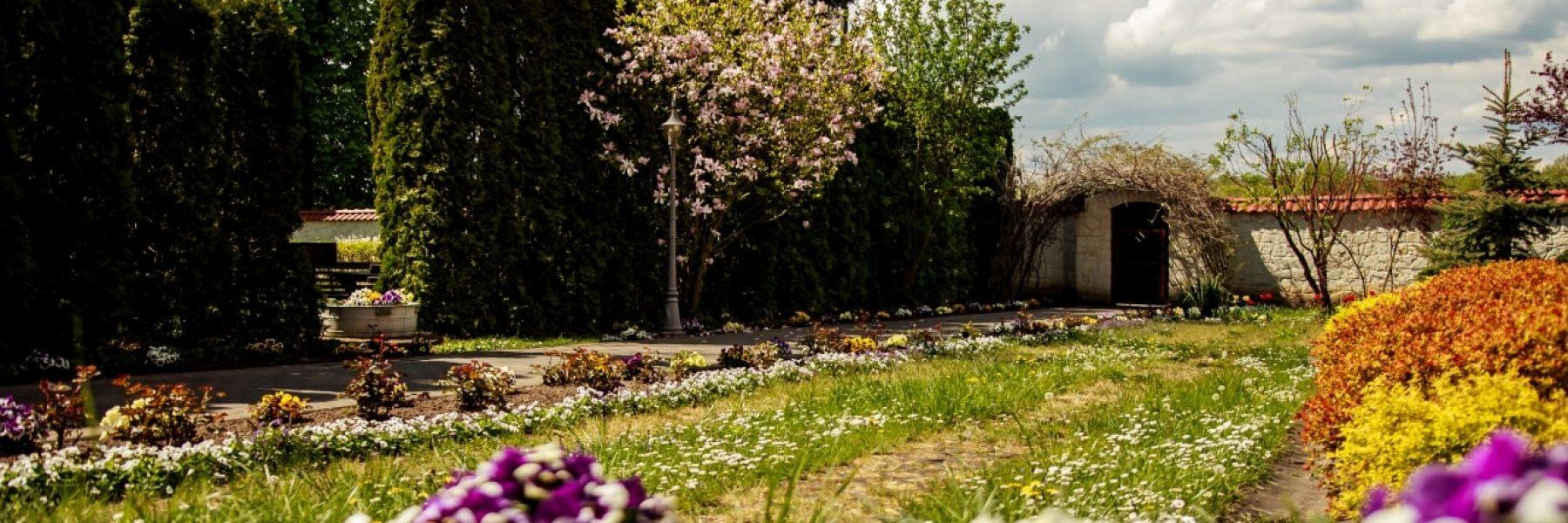 majowy-spacer-po-ogrodzie-5-min